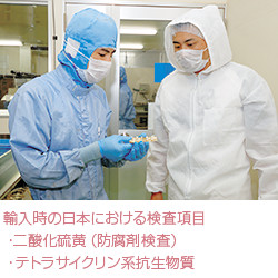 ⑤GMP認定医薬工場にてカプセル充填